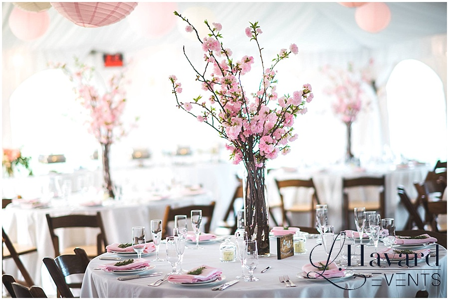 dc-cherry-blossom-wedding-centerpieces-lanterns-tent